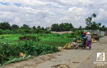 TP.HCM: Huyện Hóc Môn khuyến cáo tình trạng rao bán đất nền bất hợp pháp