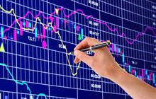 HSG, AMV, QNS, PTC, VTO, VLW, XHC: Thông tin giao dịch lượng lớn cổ phiếu