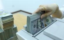 Tỷ giá trung tâm tiếp tục lập đỉnh mới, USD ngân hàng lên sát 23.400 đồng
