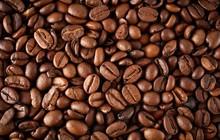 Sản lượng cà phê toàn cầu sẽ lập kỷ lục mới trong vụ này