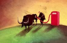 """Cổ phiếu dầu khí, ngân hàng tiếp tục """"hút tiền"""", HVN, ACV giảm mạnh sau chuỗi phiên tăng nóng"""