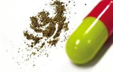 Bắt giữ 120 nghìn viên thuốc con nhộng không rõ nguồn gốc