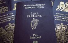 """Sốt"" hộ chiếu Ireland trước thềm Brexit"