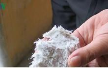"""Hàng hóa chứa Phthalate, Cadimi và Amiăng bị """"cấm cửa"""" vào EU"""