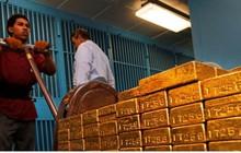 Giá vàng tuần tới được dự đoán tiếp tục tăng cao
