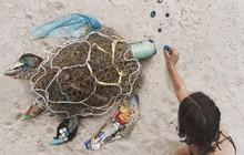 Sáng tạo từ rác thải nhựa - Hành động kỳ lạ của bà mẹ trẻ khiến cộng đồng thức tỉnh: Chúng ta đang làm gì với trái đất?