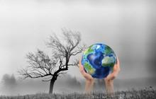 Trưởng ban Kinh tế Trung ương: Không ứng phó hiệu quả biến đổi khí hậu, thành quả phát triển kinh tế sẽ chịu tổn hại!