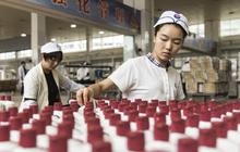 """Cổ phiếu của """"Quốc tửu"""" Trung Quốc tăng 123% chỉ trong vòng 1 năm, vốn hoá còn cao hơn cả Pepsi và Boeing"""