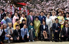 Nhật Bản bất ngờ huỷ bỏ lễ hội hoa anh đào năm 2020