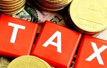 Lideco (NTL) bị truy thu và phạt hơn 2,3 tỷ đồng tiền thuế