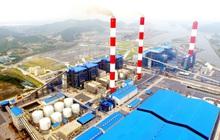 SCIC đấu giá toàn bộ vốn tại Nhiệt điện Quảng Ninh với giá khởi điểm gấp đôi thị giá, dự thu hơn 1.223 tỷ đồng