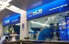 Giám đốc Quản trị rủi ro của VPBank sang làm Phó Tổng giám đốc NCB