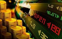 FCN, TDG, BVH, DHC, YBM: Thông tin giao dịch lượng lớn cổ phiếu