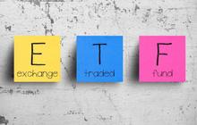 VNM ETF không thay đổi cơ cấu danh mục, đẩy mạnh mua ROS trong kỳ cơ cấu quý 4