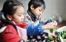 """Cha mẹ Việt """"người gào thét, người nuông chiều"""" con làm việc nhà, hãy xem các nước trên thế giới cha mẹ giao việc cho con thế nào"""