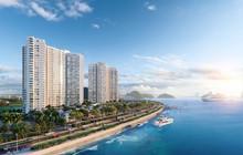 Đầu tư căn hộ nghỉ dưỡng sinh lời hấp dẫn nhờ chính sách ưu việt