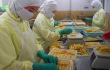 Xuất khẩu tôm sang Trung Quốc có thể mang về 700 triệu USD trong năm 2019