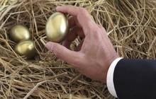 """TS. Đỗ Hoài Linh: Vẫn là """"gà đẻ trứng vàng"""" nên tín dụng tiêu dùng sẽ hút mạnh nhà đầu tư hơn nữa"""