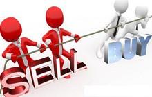 LDG, NBB, GMD, KLB, TTJ, GTN, SRA, ANV, CMT, HOT, QSP, PMT, SIV, TOP: Thông tin giao dịch lượng lớn cổ phiếu