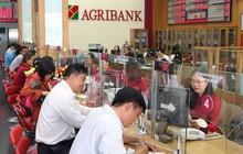 Nhiều áp lực tăng lãi suất, Ngân hàng Nhà nước ứng phó thế nào?