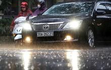 Hà Nội đón cơn 'mưa vàng' sau chuỗi ngày nắng như đổ lửa