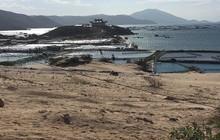 Đất Bắc Vân Phong chính thức được giao dịch trở lại