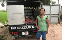 Hưng Yên: Bắt giữ gần 1 tấn thịt lợn thối