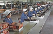 Nhìn vào bức tranh toàn cảnh 50 công ty rời Trung Quốc, Việt Nam cũng tốt nhưng không là duy nhất