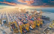 Việt Nam vượt Hong Kong về thông lượng cảng