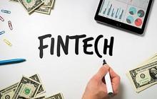 Hoàn thiện chính sách quản lý Fintech: Đảm bảo lợi ích hợp pháp cho người dùng
