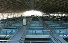 Nước sạch Sông Đà (VCW) tạm ứng tiếp 8% cổ tức bằng tiền đợt 2/2019