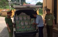 Chặn đứng 400 chai bia hiệu Liquan và 150 kg cá chim đã qua chế biến đóng túi nhập lậu từ Trung Quốc