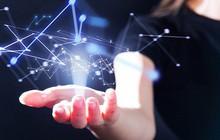 DLG, VHC, SGD, HDC, QNS, BDG: Thông tin giao dịch lượng lớn cổ phiếu