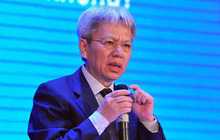 TS. Nguyễn Sĩ Dũng: Tình trạng Việt Nam giống con nhộng lột xác có một nửa!