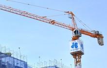 Tập đoàn Hòa Bình thông qua nghị quyết đầu tư chi phối Công ty 479