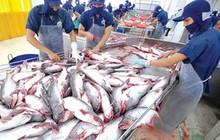 Giảm 25% từ đỉnh, chủ tịch Thủy sản Nam Việt (ANV) đăng ký mua thêm 2,6 triệu cổ phiếu