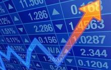 SBT, VNM, PVI, POW, SJ1, TRT, DIC, NKG, DHC, SVI: Thông tin giao dịch lượng lớn cổ phiếu
