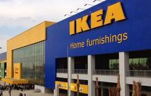 IKEA sẽ đầu tư 450 triệu USD vào Hà Nội, xây dựng hệ thống cung ứng hàng cho toàn thị trường Đông Nam Á