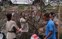 Video: Người Hà Nội ùn ùn đi săn hoa lê rừng tiền triệu sau Tết