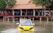 Đại gia Nhật muốn bán ô tô lội nước giá 250 triệu tại VN