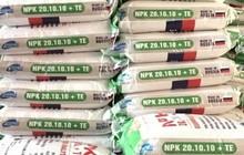 Hải quan siết chặt quản lý phân bón nhập khẩu để ngăn ngừa trốn thuế