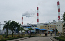 Vì sao Chủ tịch Công ty Nhiệt điện Quảng Ninh bị bắt khẩn cấp?