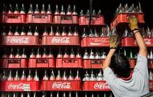 Thách thức chờ đợi Coca-Cola khi tấn công ngành sữa
