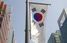 Kinh tế Hàn Quốc bất ngờ giảm mạnh nhất 10 năm