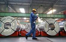 Giá thép xây dựng lên đỉnh gần 8 năm, thép cuộn cán nóng tại Trung Quốc tăng kỷ lục