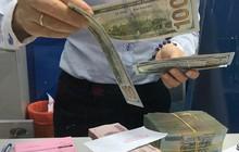 Vì sao giá USD quay đầu hạ nhiệt?