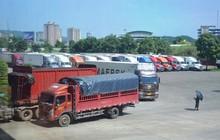Gần 15 nghìn tấn thanh long được xuất sang Trung Quốc tuần qua