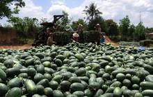 'Cửa chính' gặp rào, 'lối nhỏ' siết mạnh, đường khó của thế mạnh Việt
