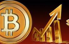 Bitcoin 'ngư ông đắc lợi' nhờ Trung Quốc tung đòn áp thuế trả đũa Mỹ