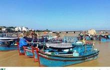 Nhiều chủ tàu cá ở Nam Trung bộ bị ngân hàng kiện đòi nợ